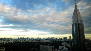 シェンロン東京